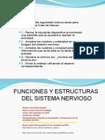 1611-Ana Patricia Aguilar-funciones y Organos Del Sistema Nervioso