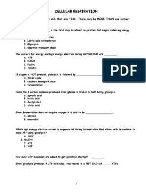 Cellular Respiration Review Worksheet Doc Cellular Respiration Adenosine Triphosphate