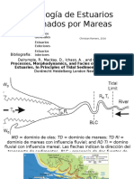 Morfología de Estuarios Dominados Por Mareas, Christian Romero, 2016