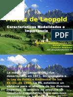 Matriz de Leopold Info