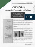 espigos. pasado,presente y futuro.pdf