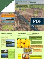 Vale a Pena, A Fruticultura Irrigada No RN