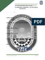 Informe-cerro de Pasco