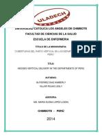 Monografía Grupal Del Parto Vertical _ Informe Final