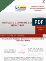 Presentacion Mercosur