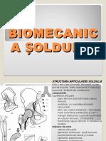 Curs 02 Biomecanica AnII BFKT
