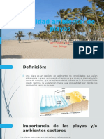 Calidad Ambiental de Playas