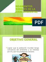 fundamentos2educacionambienta.pptx