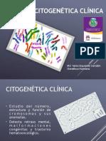 citogenetica-clinica.pdf
