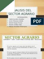 Analisis Del Sector Agrario