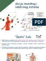 Inetrakcija Imunskog i Neuroendokrinog Sistema 1516