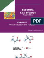 04.ProteinStructureAndFunction