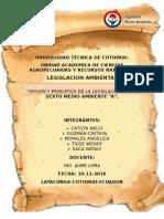 INFORME-LEGISLACION-AMBIENAL