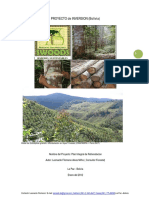 PROYECTO_de_INVERSION_(Bolivia).pdf588958825.pdf