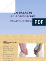 HernandezPalomares Damaris M3S3 Lafalacia