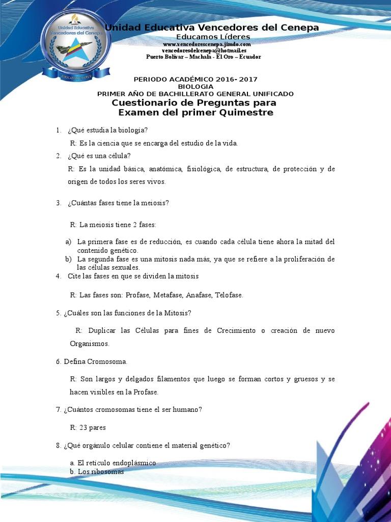 Único Anatomía Y Fisiología De La Práctica De Mitad De Período De ...