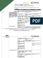 Anexo 5_Instrumento de Consolidación