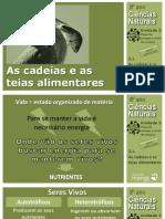 CN8_Cadeias_teias_alimentares.pdf