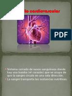 01 Aparato Cardiovascular - Vasos Sanguíneos