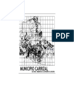 Carrizal Model