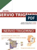 Neuroanatomía nervio trigemino