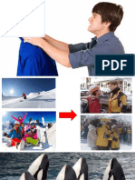 orca presentation