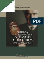 Criterios en La Determinación de La Pensión de Alimentos en La Jurisprudencia