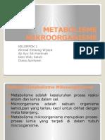 PPT METABOLISME MIKROORGANISME.pptx