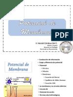 03 - Potencial de Membrana