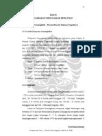 digital_122841-GEO.004-08-Karakteristik Fisik-Analisis.pdf