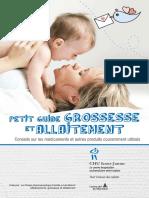 Petit Guide Grossesse Et Allaitement