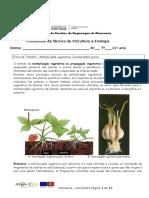 Ficha 1 Propagação Vegetativa
