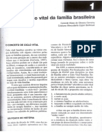 2. Ciclo Vital Da Família Brasileira