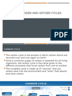 CARBON, NITROGEN And oxygen cycles.pptx