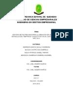 PROYECTO+INTEGRADOR+IX+_1_ (1)