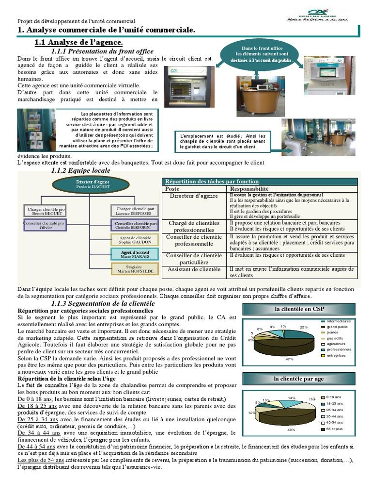 Analyse Commerciale Et Diagnostic De L Unite Commerciale Pdf