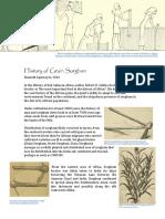 History of Sorghum Grain Production