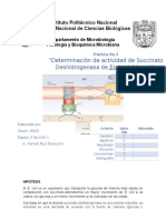 Pract 3 Succinato Deshidrogenasa16