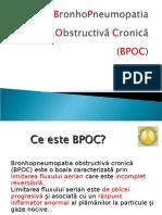 Curs_BPOC_