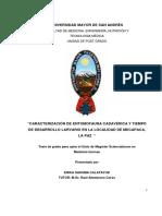 TESIS ENTOMOLOGIA BOLIVIA.pdf