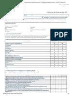 Informe PIE 2015