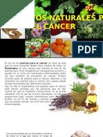 TRATAMIENTOS NATURALES PARA EL CANCER