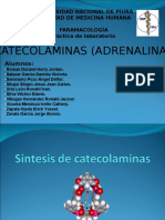 CATECOLAMINAS.ppt