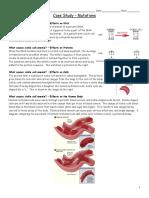 case study - mutations