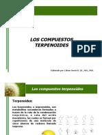 7. Compuestos terpenoides.pdf
