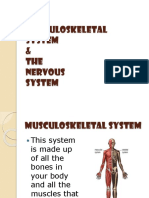 lesson 6 - musculoskeletal and nervous systems ppt