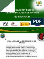 DENOMINACION DE ORIGEN IICA ES (3).ppt