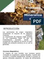 Procesos de Mineralización
