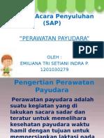 ppt-sap