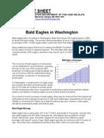 Bald Eagles - Washington Fact Sheet